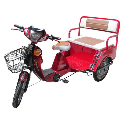 1397199021MTR-021-M(Y-B10) Eco-Bike Truckee (1)
