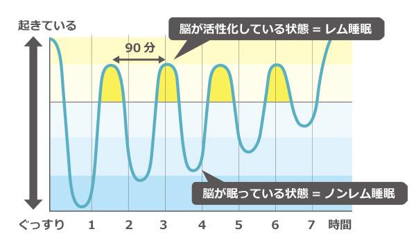 レム睡眠ノンレム睡眠のグラフ