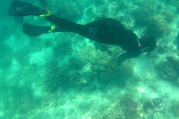 ガイドさんの潜水