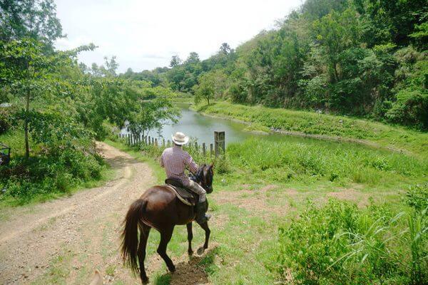 セブ_オプショナルツアー_乗馬_乗馬をする男性